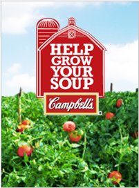 campbells-free-tomato-seeds