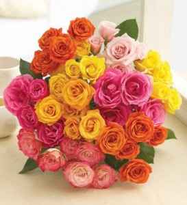 valentines-roses-deal