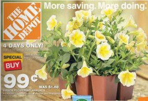 home-depot-flower-sale