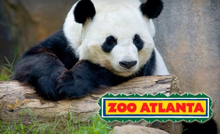 Zoo Atlanta is a popular zoo institution located in Atlanta, Georgia. You can get heavy discount on all tickets and passes for Zoo Atlanta trips using the latest Zoo Atlanta coupon codes published by androidmods.ml!
