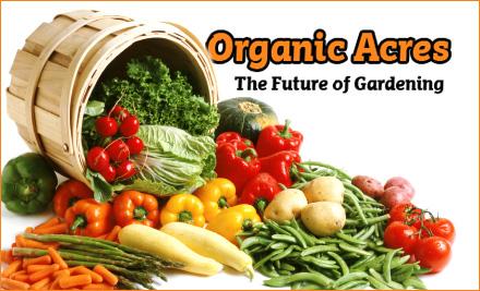 MooLaLa Organic Food Sampler