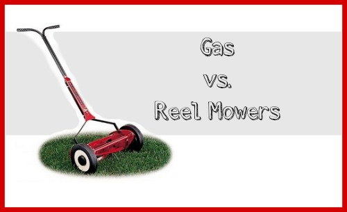 What you need to know about gas vs. reel mowers.