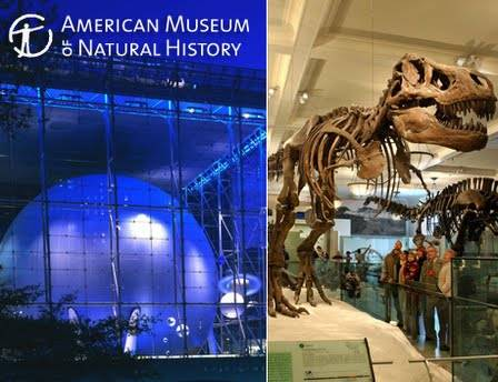 5 Entrance To American Museum Of Natural History
