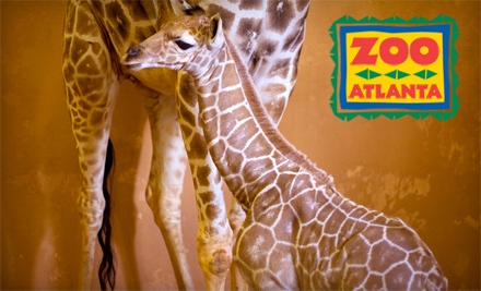 zoo atlanta deal