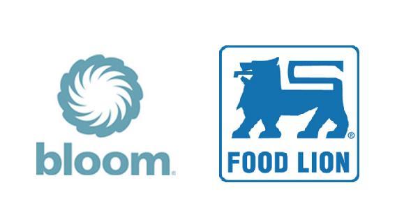 Food Lion Store Closings