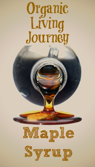 organic living journey maple syrup