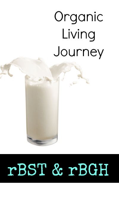 organic living journey rBST and rBGH in milk