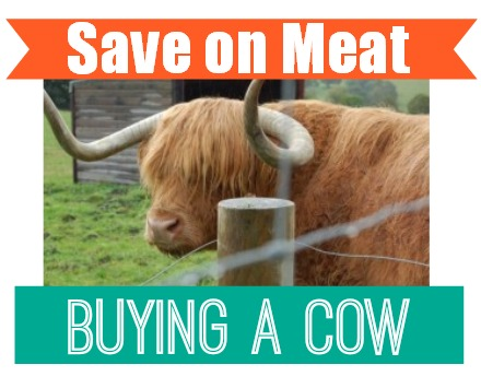 Save money on meat by buying a cow.  Frugal living and couponing!