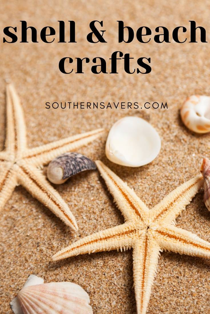 Beach Crafts for your Summer Shells