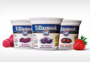 Tillamook Yougurt Coupon
