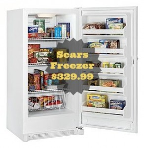 Sears Freezer Sale