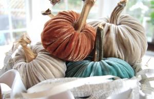 DIY velvet pumpkins!