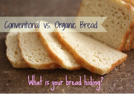 organic bread ingredients