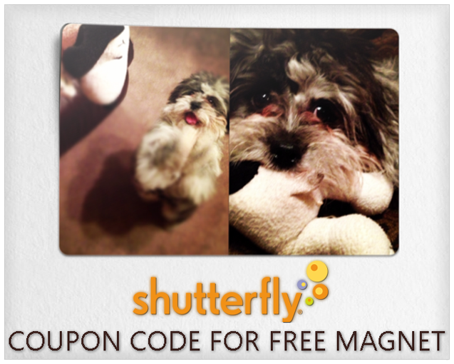 shutterfly coupon code photo magnet copy
