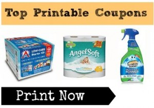photograph relating to Angel Soft Printable Coupon named Supreme Printable Discount coupons Hormel, Angel Delicate Coupon codes Added