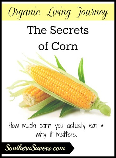 The Secrets of Corn