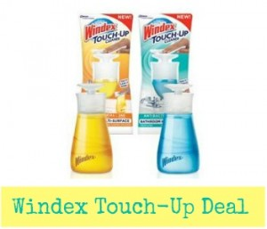 Windex Coupon