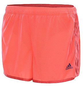 e6833895b001 Sports Authority Coupon  25% off A Single Item    Southern Savers
