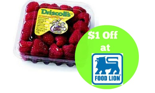 food lion coupon