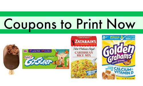 publix coupons to print now