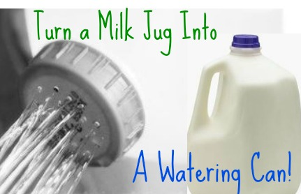 Bi Lo Stores >> Quick Tip: Turn A Milk Jug Into A Watering Can :: Southern ...