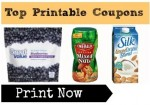 Top Printable Coupons | Post, Silk, Emerald Coupon & More!