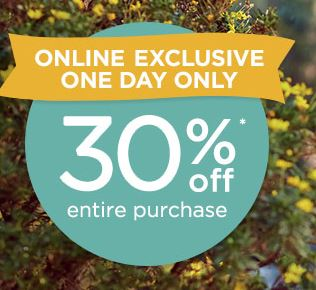 gymboree online exclusive