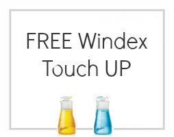 windex touch up deal