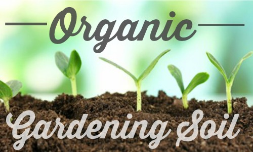 Organic Living Journey Organic Gardening Soil Southern Savers