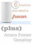 6 Ways An Extra Freezer Saves You Money + Amana Freezer Giveaway!
