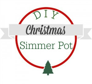 DIY Christmas Simmer Pot Recipes