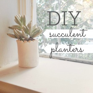 DIY succulent planters as Christmas gifts!