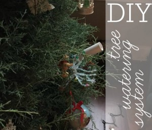 diy tree watering system