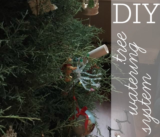 Diy Christmas Easy Tree Watering System Southern Savers