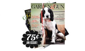 garden & gun magazine 75 an issue
