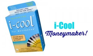 i-cool moneymaker