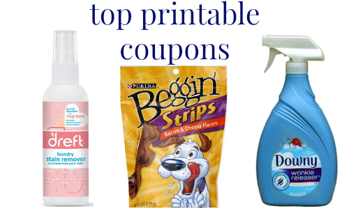 graphic regarding Dreft Printable Coupon identify Ultimate Printable Discount coupons Downy, Dreft Even further :: Southern Savers