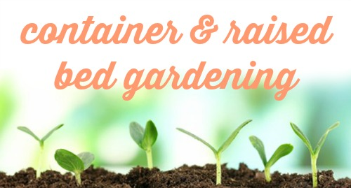 Container & Raised Bed Gardening