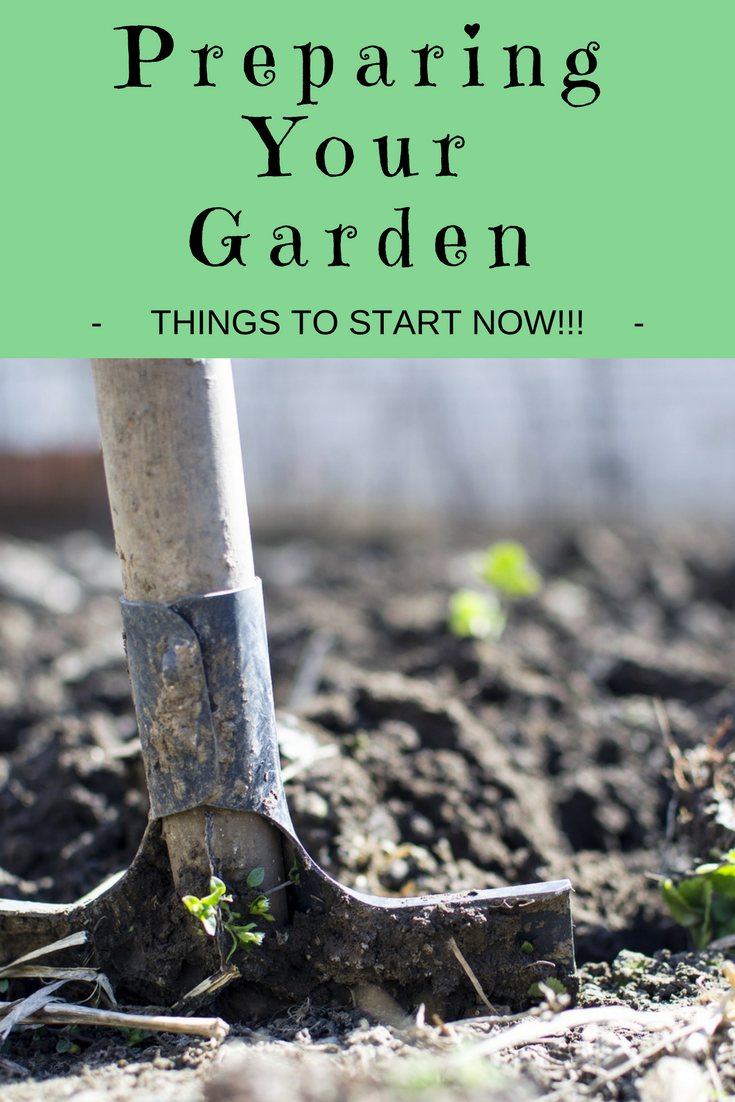Getting Your Garden Ready For Spring: Things to Start Now