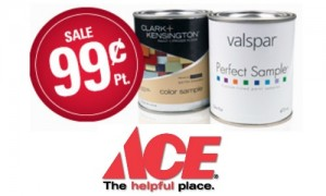 ace hardware deal