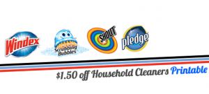 household cleaners coupon