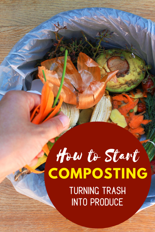 Did you know you can create your own compost for almost free? Here is everything you need to know about how to start composting and turn trash into produce!