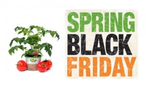 home depot spring black friday