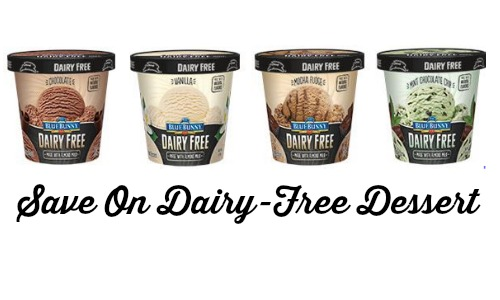 dairy free dessert
