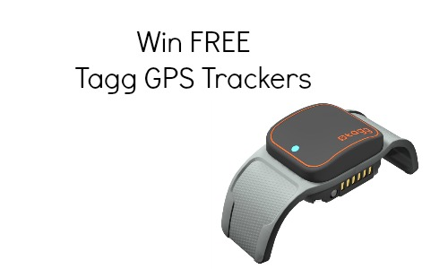 tagg gps trackers