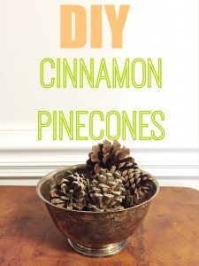 Why spend money on scented pinecones that are treated with chemicals  Try this recipe for DIY cinnamon pinecones.