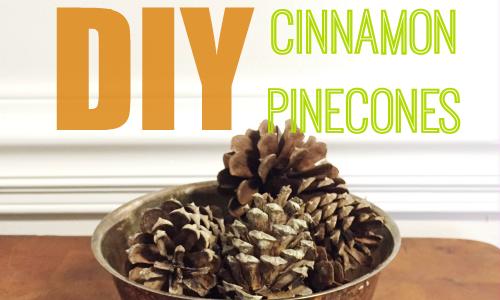 diy cinnamon pine cones