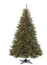 20 Off Coupon Christmas Trees