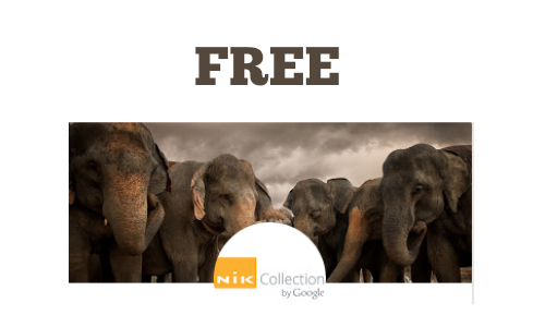Free Google Photo Editing Software