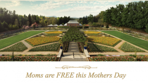 biltmore free for mothers